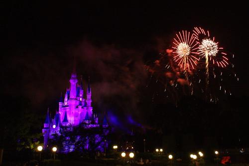 magic kingdom disney world florida. magic kingdom disney world