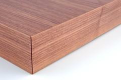X-Board Plus Panel #2