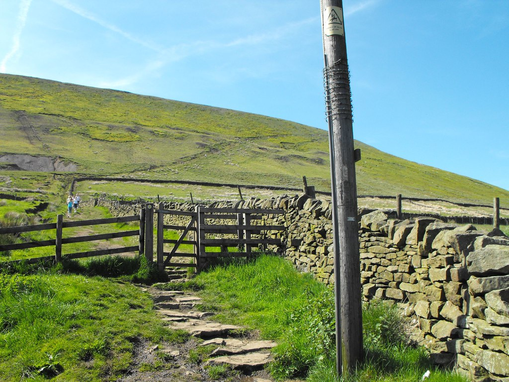 Pendle_Hill_SP-005_24-May-2009 _004