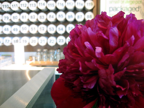 peony and tea jars