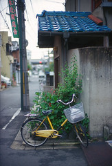 NOCTILUX 50f0.95-2 (Shig@kyoto) Tags: leica japan 50mm kyoto 4th mp noctilux generation bycycle f095 noctiluxm