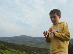 Tin Whistle - Irish Trad Music
