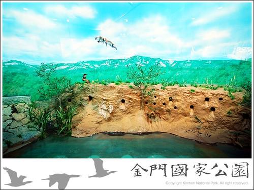 雙鯉濕地中心-04