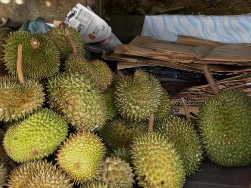 Pergh...lagi durian