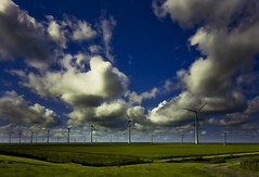 More Windmills (Guido Musch) Tags: blue green netherlands windmill clouds nikon nederland explore groningen windmolen greengrass greenenergy eemshaven sigma1020 d40 nohdr ontourwithmartin guidomusch