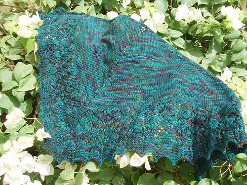 shawl on bush