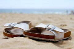 Beach shoes (@Doug88888) Tags: pictures uk wallpaper england holiday beach digital canon photo shoes image bokeh creative picture gimp kingdom commons images flip buy purchase flop birkenstock 400d doug88888