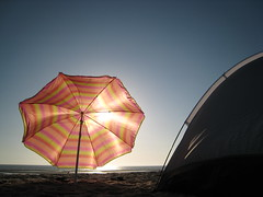 San Felipe: Beach Camping