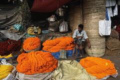 waiting for a customer | Kolkata (arnabchat) Tags: india westbengal bengal bangla arnabchat arnabchatterjee mullickghatflowermarket mullickghat flower market marigold seller waiting orange calcutta kolkata canon400d