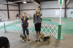 A fun weekend! 2009 Illinois Dog Show.