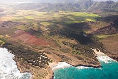 2009-05-08-IMG_0028-3 (abnormalcy) Tags: ocean hawaii farmland shore kauai tokinaaf1224mmf4 wingsoverkauai