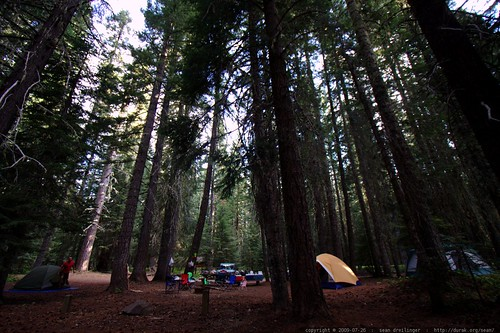 our campsite at 7am - _MG_9813