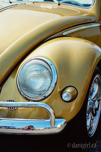 1956 VW bug