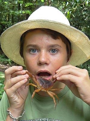 paul et le crabe.jpg