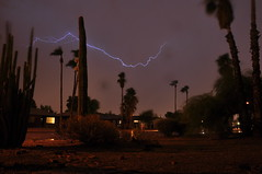 DSC_0007 (georgerocheleau) Tags: arizona cactus rain night desert thunderstorm lightning mesa stormnight arizonathunderstorms