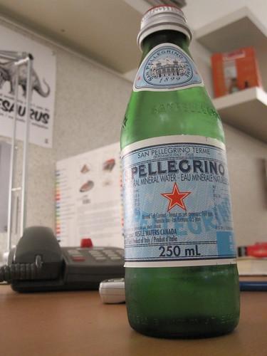 San Pellegrino from Pasta Café - $1.65