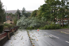 Tree blocks road (Dougie m) Tags: road tree alexandria photo europe heather vale fallen avenue lochlomond leven schottland ecosse valeofleven heatheravenue