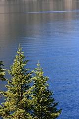 Jenny Lake (wanderingYew2) Tags: lake nationalpark wyoming jacksonhole grandtetonnationalpark jennylake glaciallake blueribbonwinner mywinners goldstaraward