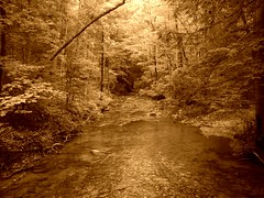 Wildcat Creek (<Bobby>) Tags: mountains sepia hiking wildcatcreek dawsoncountygeorgia southernappalachians