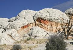 The White Pocket, Paria Wilderness, AZ (johnhayes5032) Tags: arizona southwest sandstone desert erosion wilderness navajo slickrock rockart thewave striations coyotebuttes paria vermillioncliffs pagearizona whitepocket deserterosion