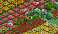 Farmville flowers