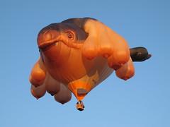 Skywhale in morning sunlight (spelio) Tags: festival balloons hotair australia canberra act 2014 aloft