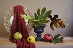 Big Things (Esther Spektor - Thanks for 12+millions views..) Tags: stilllife naturemorte bodegon naturezamorta stilleben naturamorta composition artisticphoto creativephotography arrangement things big tabletop autumn food fruit quince pomegranate tray scarf drape vase leaf bouquet ceramics wooden wicker availablelight yellow green red beige bronze brown estherspektor canon