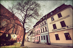 Berlin - Nicolajvertel (manlio_k) Tags: building tree berlin texture hdr manlio photomatix tonemapped tonemap manliocastagna manliok