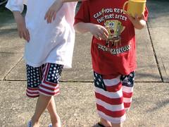 Flag pants