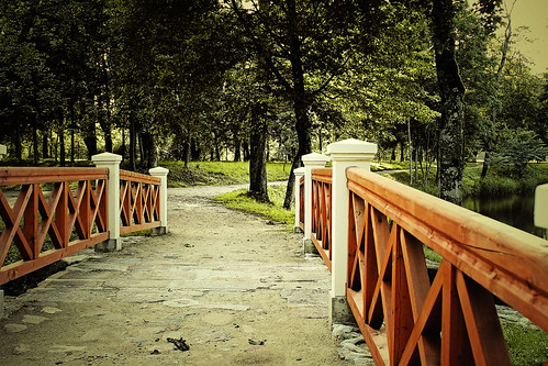 Plungės parkas - Tiltelis
