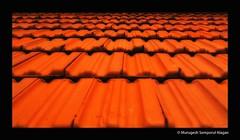 Dakshinchitra Roof - Oodu (Murugesh Semporul Alagan) Tags: roof colors digital canon photography eos rebel colorful ceiling xsi dakshinchitra 18200mm murugesh 450d alagan semporul smurugesh