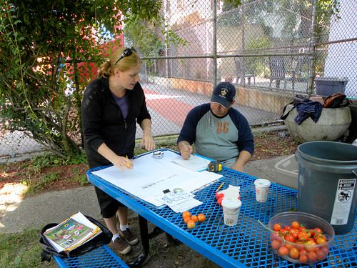 Portable School Garden: PS 102 Bay Ridge, Brooklyn