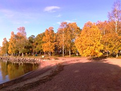 Fall at Lake Vänern in Sweden #3