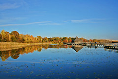 (riot jane) Tags: blue autumn trees sky reflection fall nature leaves michigan wetlands crosswindsmarsh