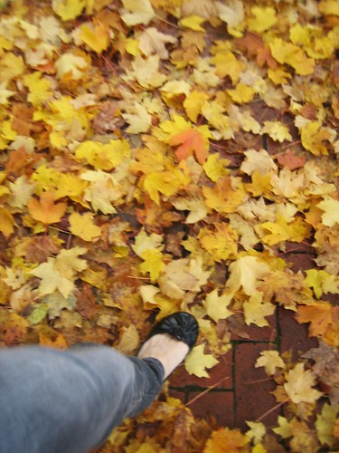 091023. self-portrait day. walking through the leaves.