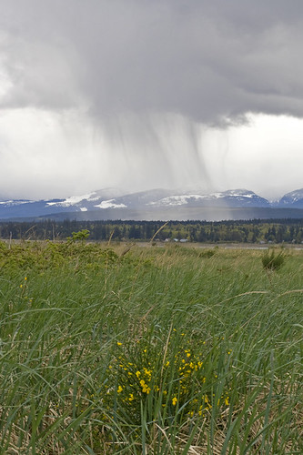 sheet rain across the hills