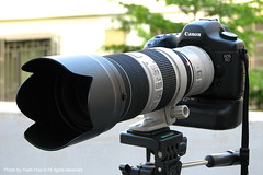 Canon EOS 5D + Canon EF 70-200mm f/2.8 L IS II USM with Canon Extender EF 2X II (*Yueh-Hua 2013) Tags: sport canon lens is optical tools equipment dslr ef 2x 77mm   canoneos5d imagestabilization   2xii bge4 canonextenderef2xii         bwmrcuv   opticalimagestabilization canonef70200mmf28lisiiusm   2011june   23elementsin19groups ringtypeultrasonicmotor canonet87lenshood 4stopsclaimed