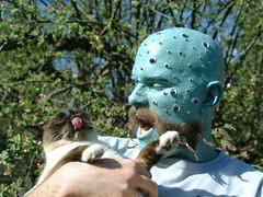 kitty-tongue (sethhenry1) Tags: moustache octopus mustache photocontest seamonster bluemangroup moustachemay moustachetattoo octopustattoo octopusmoustache octostache octopusmoustachetattoo