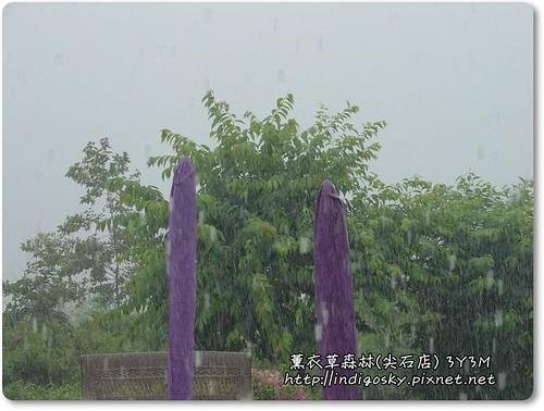 新竹薰衣草森林(尖石)-131