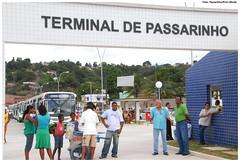 Grande Recife Consórcio de Transporte inicia processo de seleção
