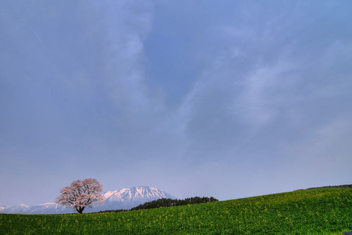 The Sky in Spring