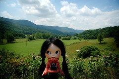 Road Trip Beauty - 5/365 A Doll A Day