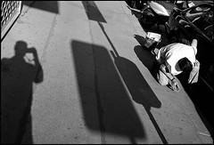 (artigiano) Tags: vienna wien street leica shadow self blackwhite diafine schwarzweiss schatten leicam7 m7 summarit tmax100160