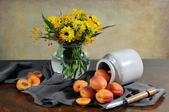Summer Apricots (floralgal) Tags: stilllife orange texture yellow fruit silkscarf apricots vaseofflowers mywinners tabletopstilllife flickrdiamond stilllifecomposition citrit rubyaward yellowandorangeflowers fruitstilllife fineartsphoto silktablecloth decorativ
