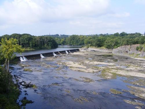 Branch Dam