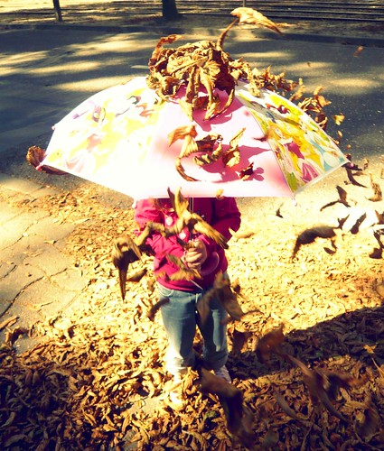 lluvia de hojas secas