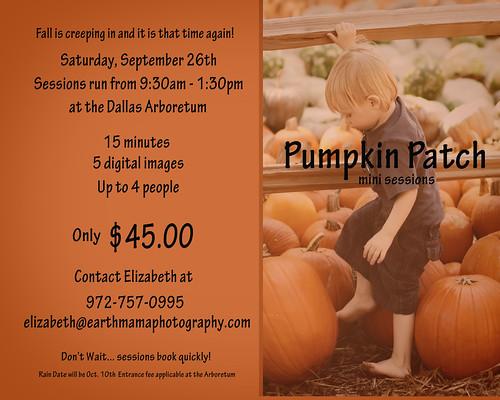 pumpkin_patch_09-2