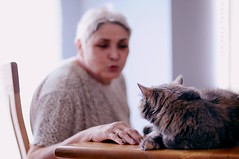 (Mandy Frediani) Tags: old woman pet lady cat feline kiss bokeh kitty elderly meow سكس