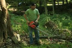 _MG_6408.JPG (zimbablade) Tags: trees sleepyhollow dougmiller videopoem