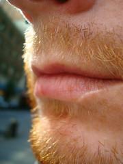 FYFF facial hair (redjoe) Tags: street nyc newyorkcity light sun man hot macro guy me face closeup self hair fur beard ginger fuzzy manhattan lips redhead freckles redhair fuzz redjoe joehorvath fyff